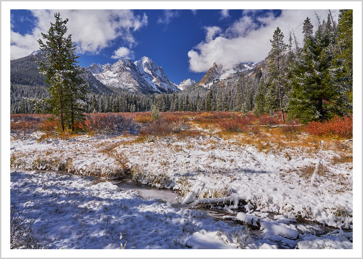 Fishhook Creek Meadow