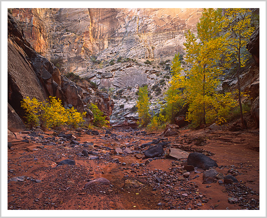 Fall colors of Spring Canyon, Utah - October 2012